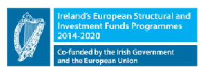 Co-Funded by the Irish Government and European Union